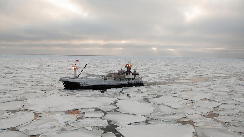 Bering Sea Swim Club