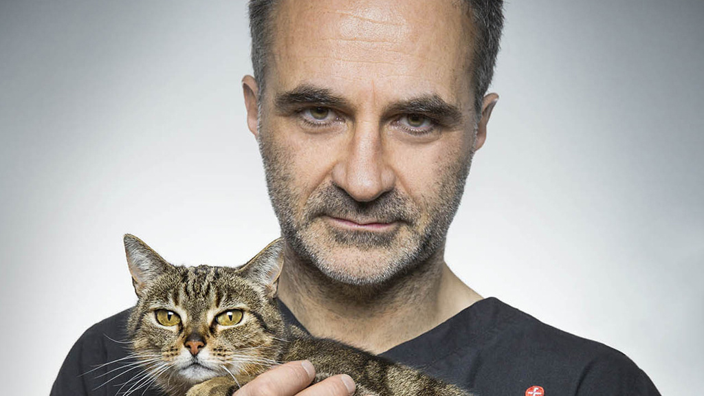 The Supervet: Christmas in the Clinic